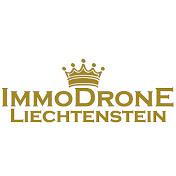 immodrone Liechtenstein net worth