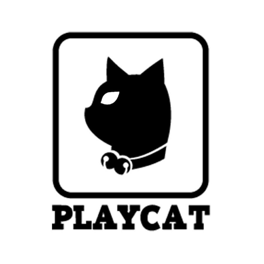 플레이캣 프리미엄 고양이 투명 놀이터