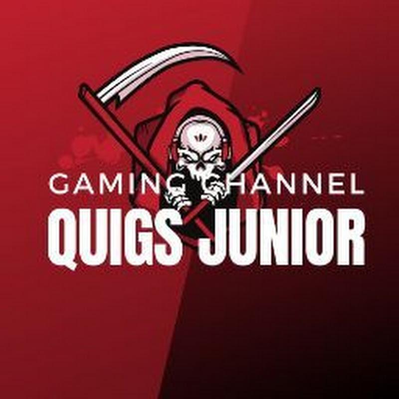 Quigs junior (quigs-junior)