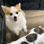 Carolina Herrera Avatar