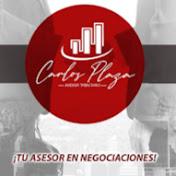 carlosplaza_asesores