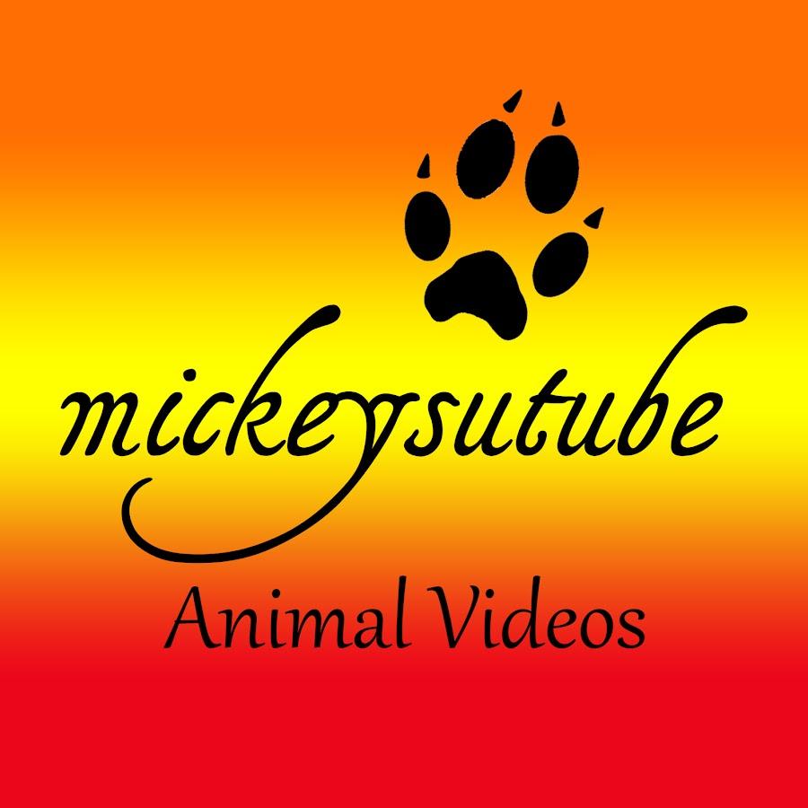 mickeysutube