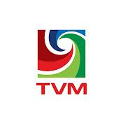 Television Maldives net worth