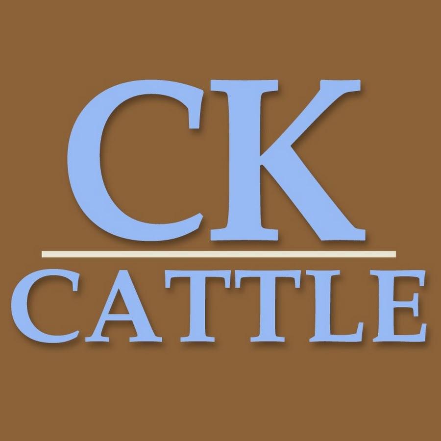 CKCattleChiAngus