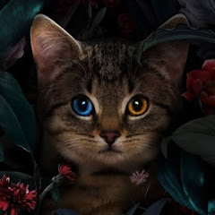 Nyu Live