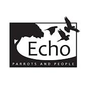 Echo Bonaire net worth