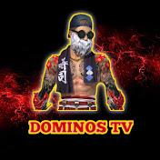 DOMINOS TV net worth