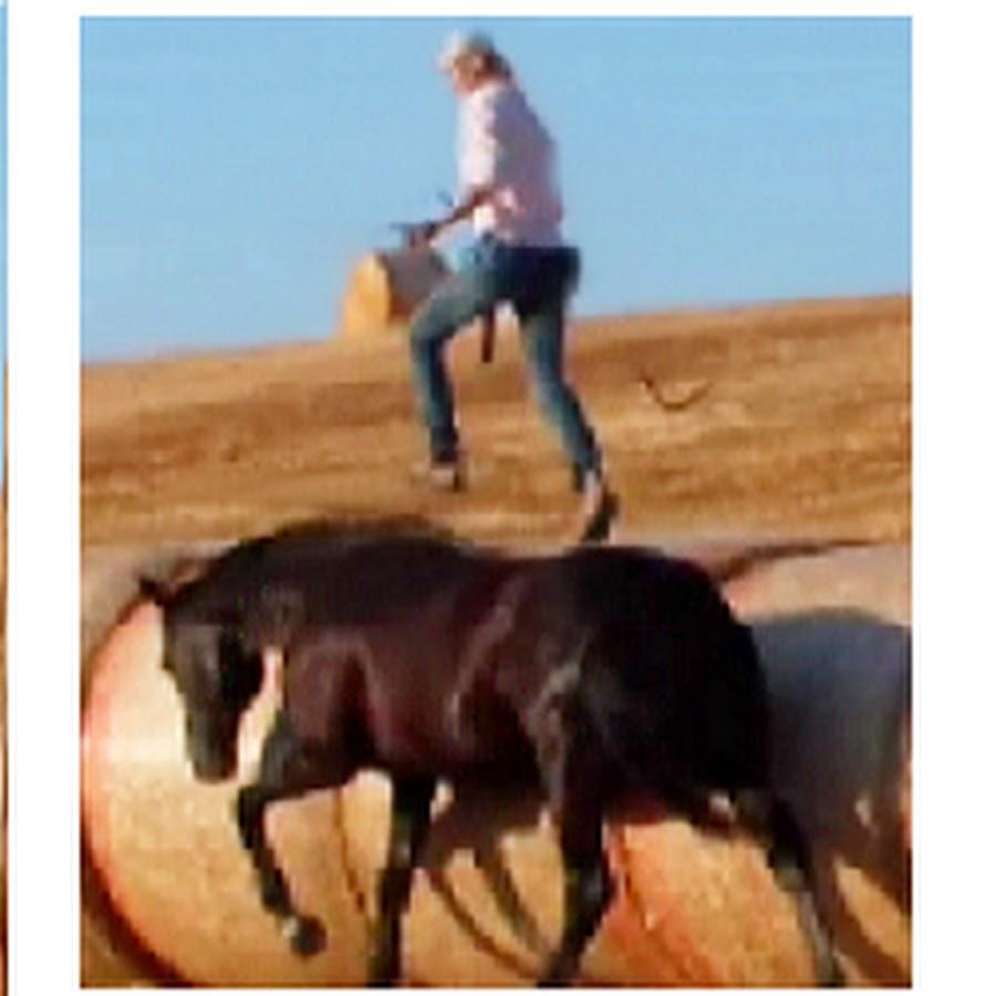 Horse & human -riding