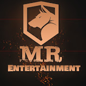 Mr. Entertainment net worth
