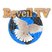 Reveil TV SAT net worth