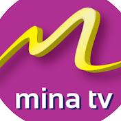 MinaTV Africa net worth