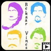 Bekaar Vines net worth