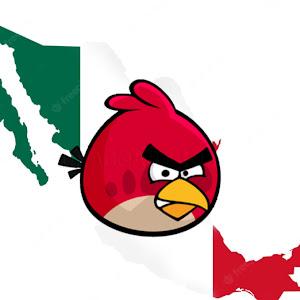 ChicoSpartano100 Pro 10