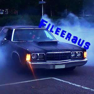 Fileeraus