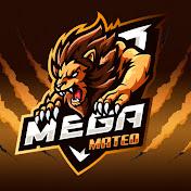 Mega Mateo net worth