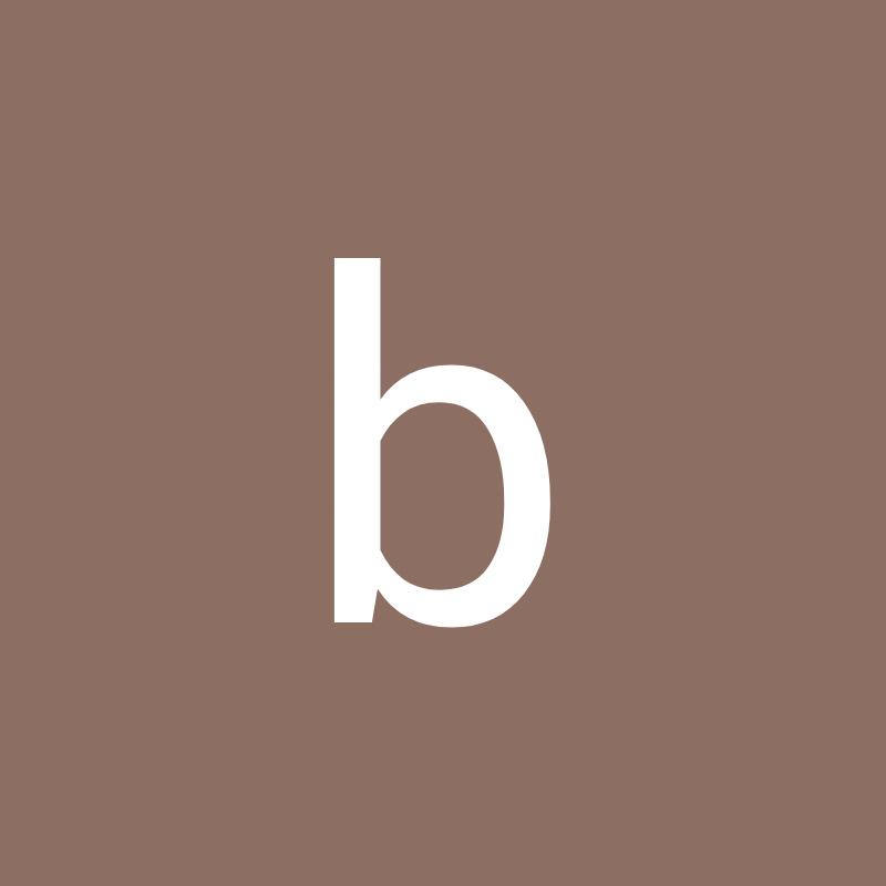 bm244 Brice