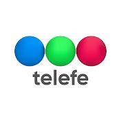 Telefe net worth