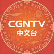 CGNTV Chinese Avatar