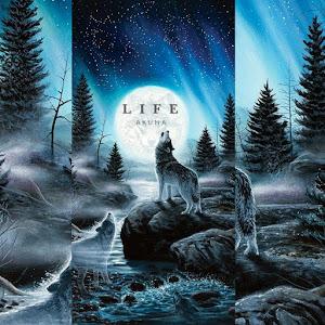 Life Lyrics Akuma