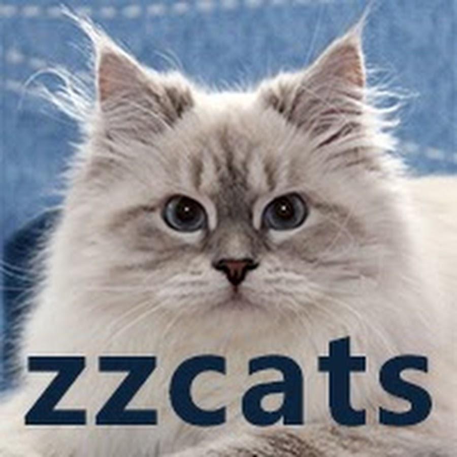 Сибирские Котята ZZCATS