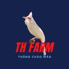 TH Fam _ Thắng Chào Mào