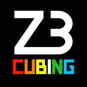 Z3Cubing net worth