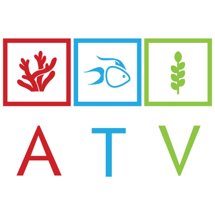 AcuaTV