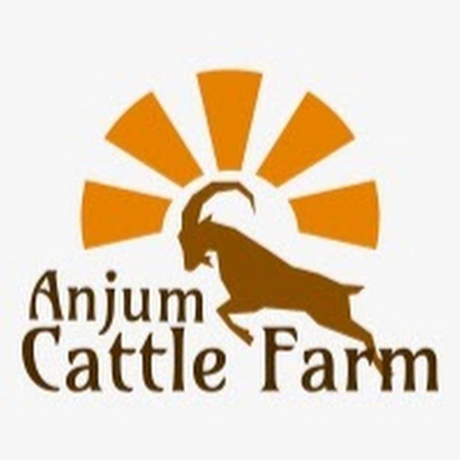 Anjum Cattel Farm