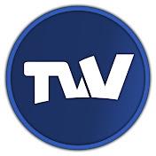 TVV net worth