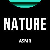 NATURE ASMR & MORE net worth
