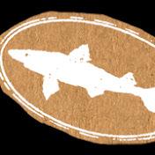 Dogfish Head Craft Brewery net worth