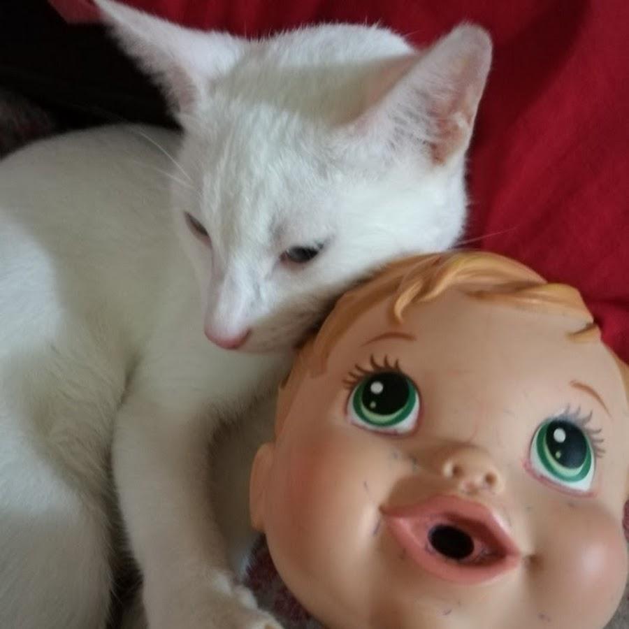 PUSPIN CATS
