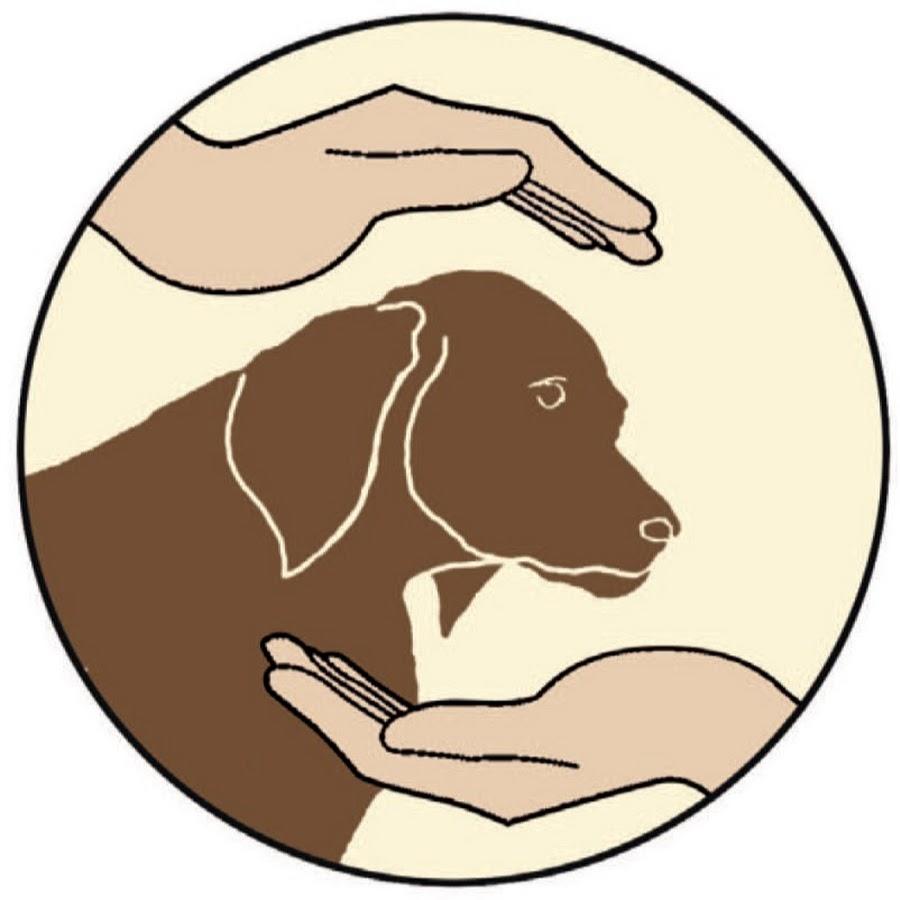saving-dogs e.V.