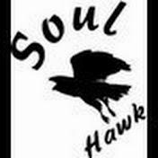 Soulhawk Avatar