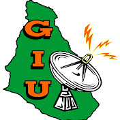 GOM Information Unit net worth