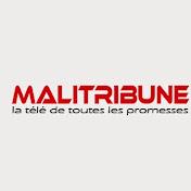 MALITRIBUNE TV - La télé de toutes les promesses net worth