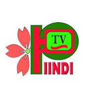 PIINDI TV net worth