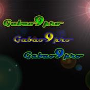 Gabao9pro net worth