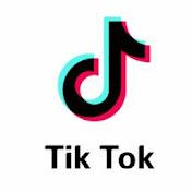 Tiktok Artist TV net worth