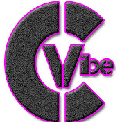 Channel Vibe net worth