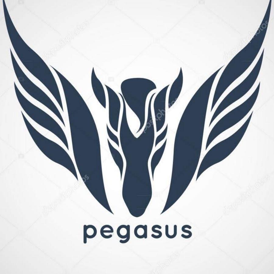 Ruyten Pegasus
