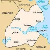 Réseau des Actualité Djiboutiennes net worth