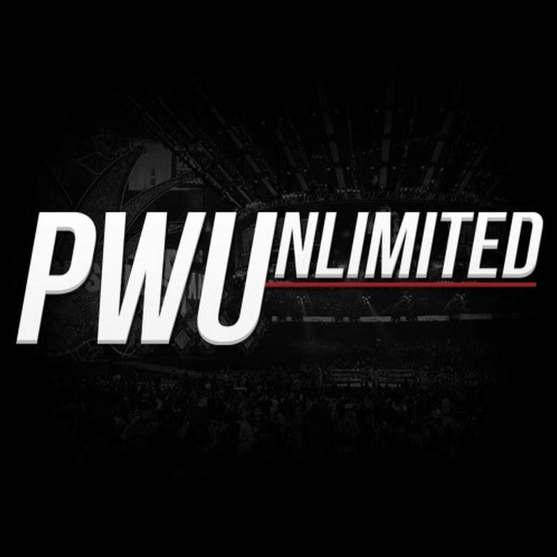 Pro Wrestling Unlimited
