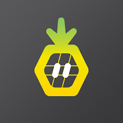 Pineapple Works