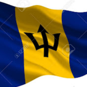 Danroyd's Barbados Travel Vlogs net worth