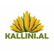 Kallini. al net worth