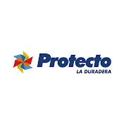 Pinturas Protecto net worth