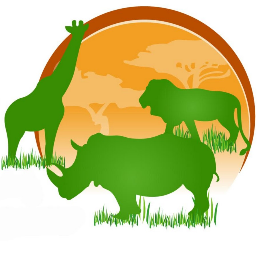 African Safaris Ltd
