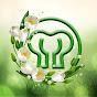 Korkmaz Hayatın Lezzeti  Youtube video kanalı Profil Fotoğrafı