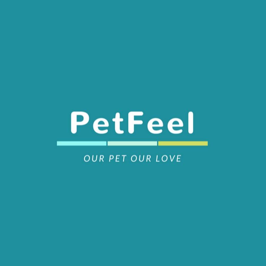Pet Feel